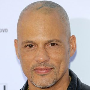 David Labrava is bald and has a tattoo in his head