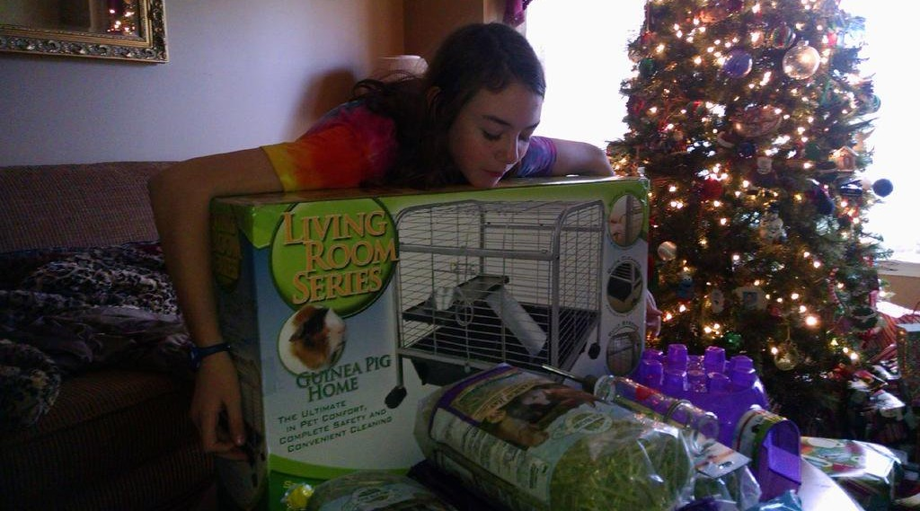 Kelly Cass' daughter holding a living room for Guinea pig packet in a box.