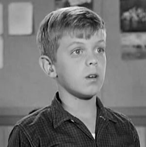 Stephen Talbot as Gilbert Bates in sitcom Leave it to Beaver. Apart from the show, Stephen Talbot has also starred in other shows like Perry Mason, Sugarfoot and Wanted: Dead or Alive