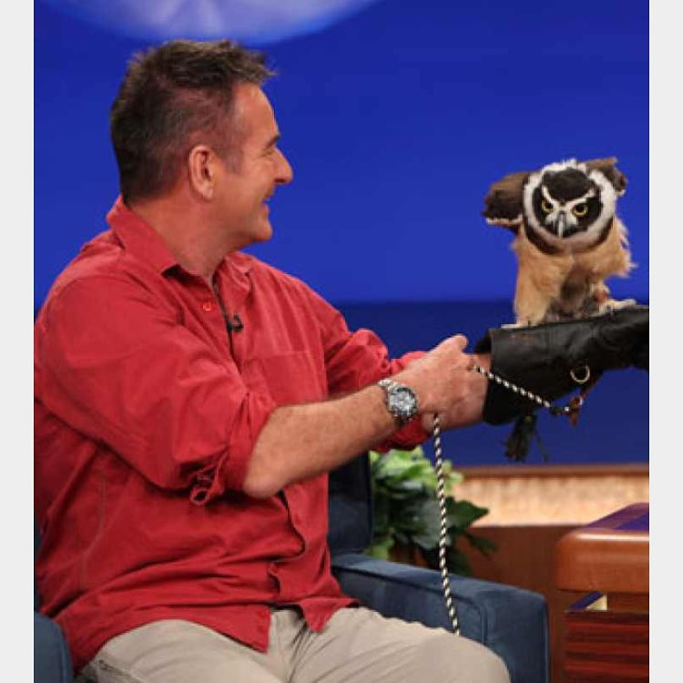 Nigel Marven has a hooter on his hands