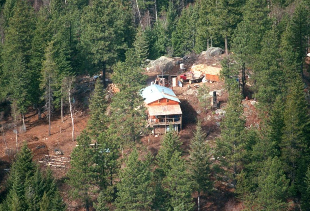 A small cottage stays in the midst of the woods. The cottage is surrounded by large trees. It appears like the cabin of is on top of a hill.