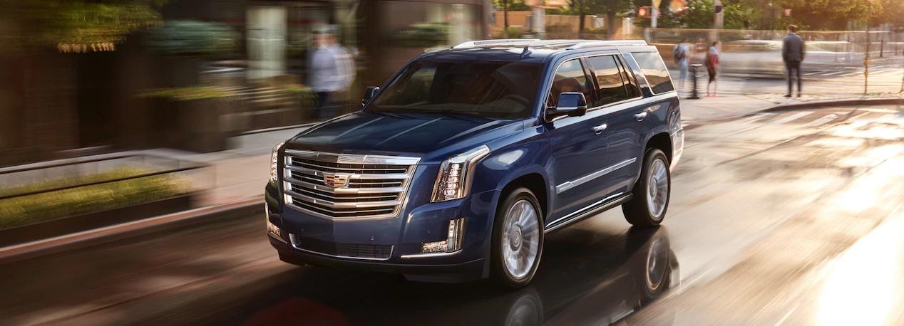 Blue coloured Cadillac Escalade