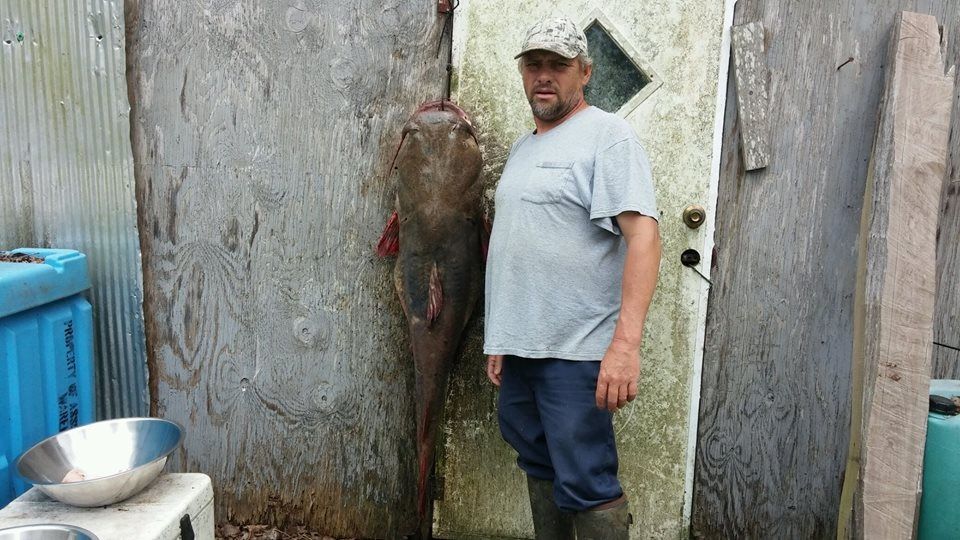 Junior Edwards standing alongside the dead fish