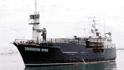 Captain Steve Harley Davidson's Southern Wind