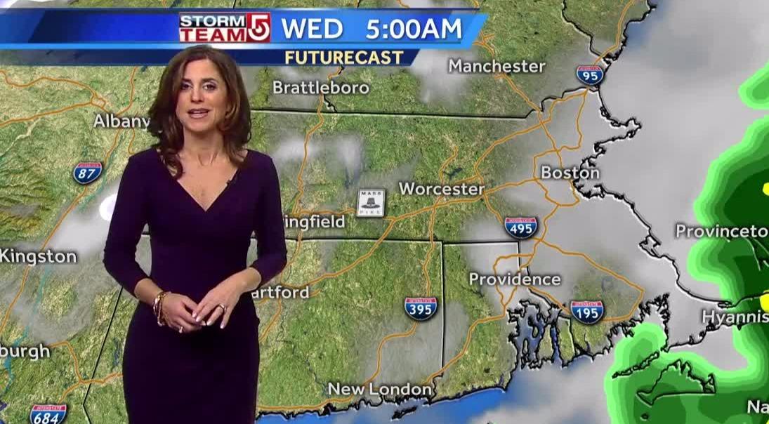 Cindy Fitzgibbon in a purple dress