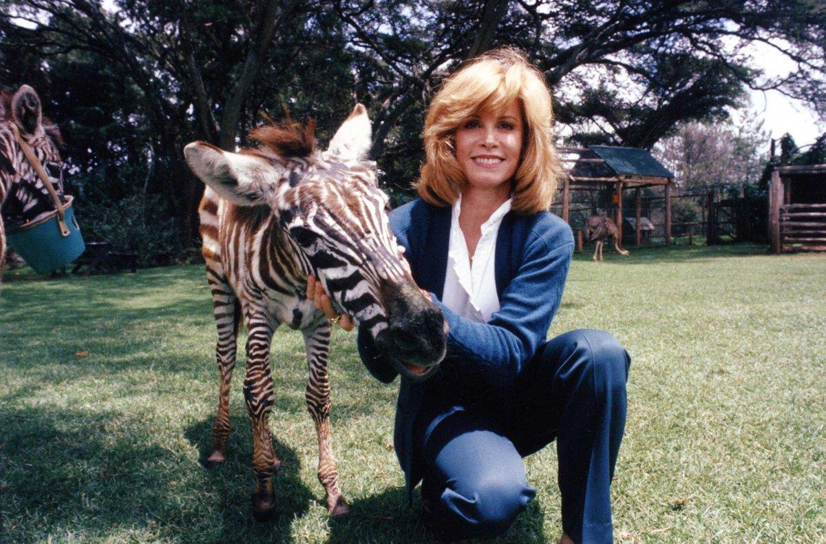 Stefanie Powers with zebra in a park