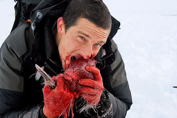 Bear Grylls eating a raw heart of a Reindeer in one of his episode of survival series. He is holding a knife, his hands are full of blood.