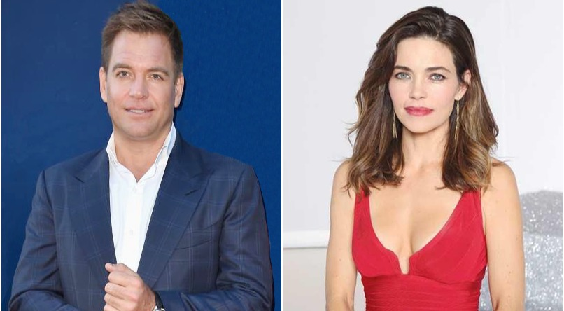Actor Michael Weatherly's first wife Amelia Heinle is an actress too. They got married in 1995 and divorced in 1997.