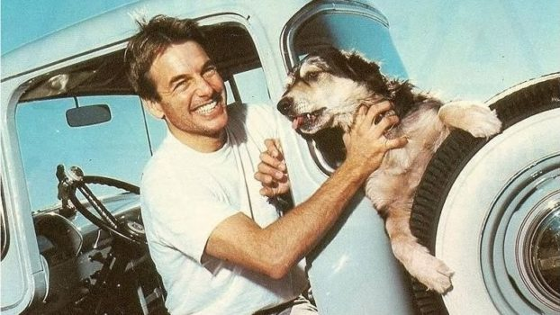 Mark Harmon is sitting in a car with his one hand on a dog
