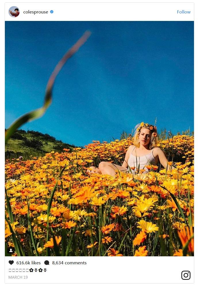 Lili Reinhart in the flower field
