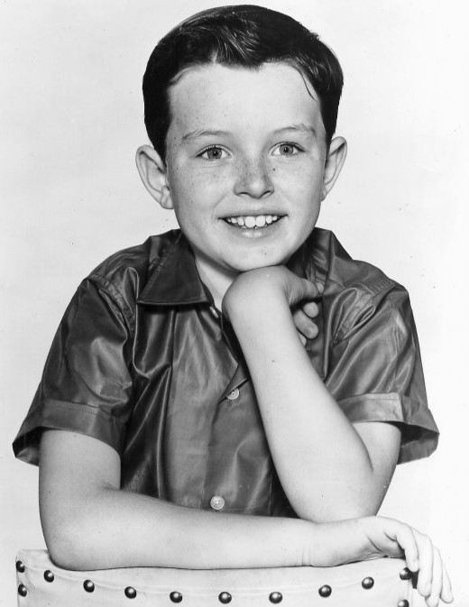 "Jerry Mathers played Theodore ""Beaver"" Cleaver in Leave It to Beaver"
