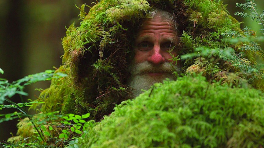 Mick Dodge peeking with the trees stump and bushes on his head. He is widely known as The Barefoot Sensei.