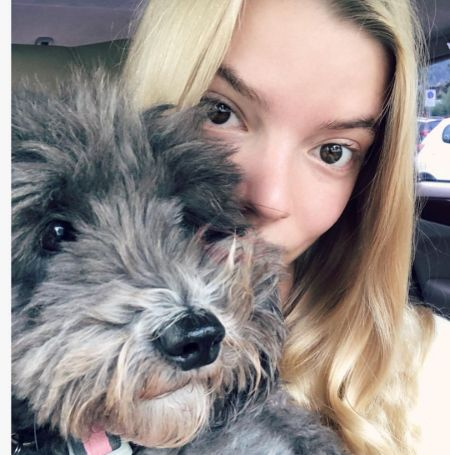 Actress Anya Taylor-Joy taking a selfie with her dog